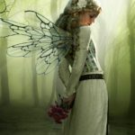 Fairy-fairies-29748309-537-668